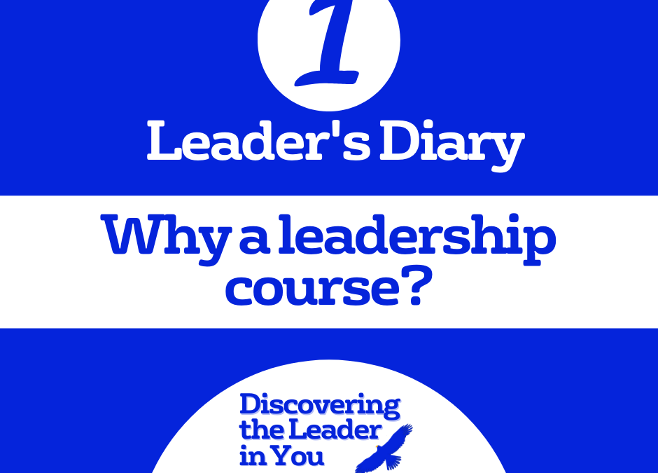 Discovering the leader in you - Leader's diary